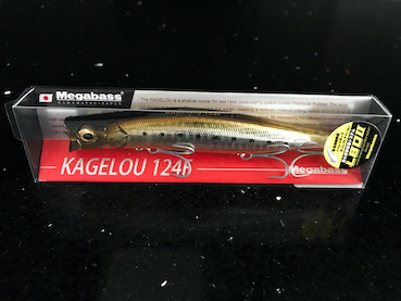sea bass lure